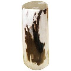 Small Petrified Wood A Column