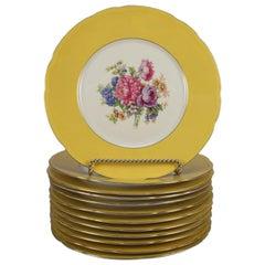 12 Vintage Czech Bohemian F&R Baronet Fine China Floral Dinner Plates