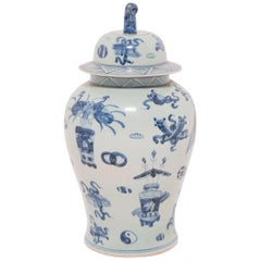 Blue and White Scholar's Joy Ginger Jar