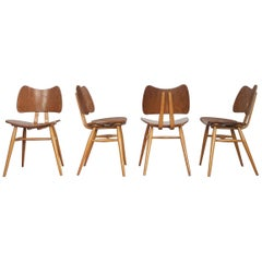 Set of Four Vintage Midcentury Ercol Butterfly Chairs