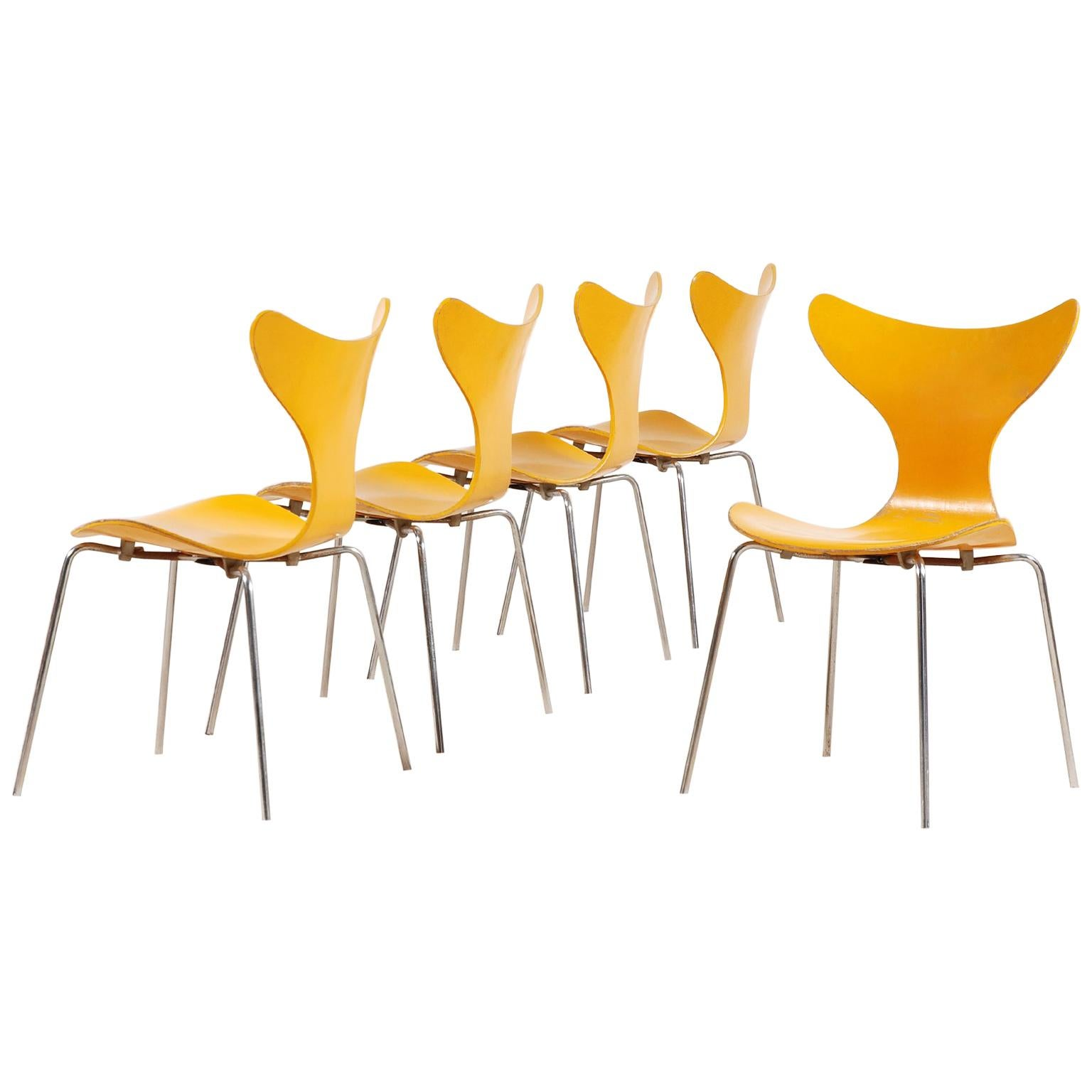Arne Jacobsen, Set of 5 Lily Chairs for Fritz Hansen, 1968