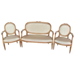 Stunning 19th Century, French Sofa and Chairs
