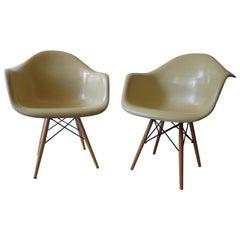 Mid-Century Modern Charles Eames Herman Miller Fiberglass Dining Chairs, 1960s