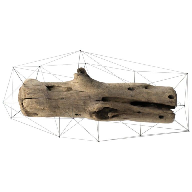 Crust of the Polygon 02 Norihiko Terayama Driftwood Sculpture
