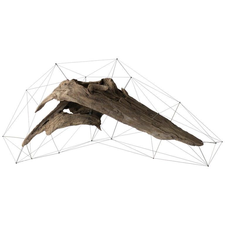 Crust of the Polygon 03 Norihiko Terayama Driftwood Sculpture For Sale
