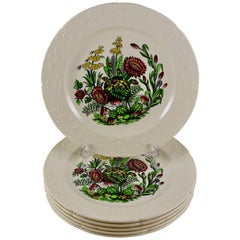 Copeland Spode English Enameled Transferware Cactus Flower Dinner Plates S/6
