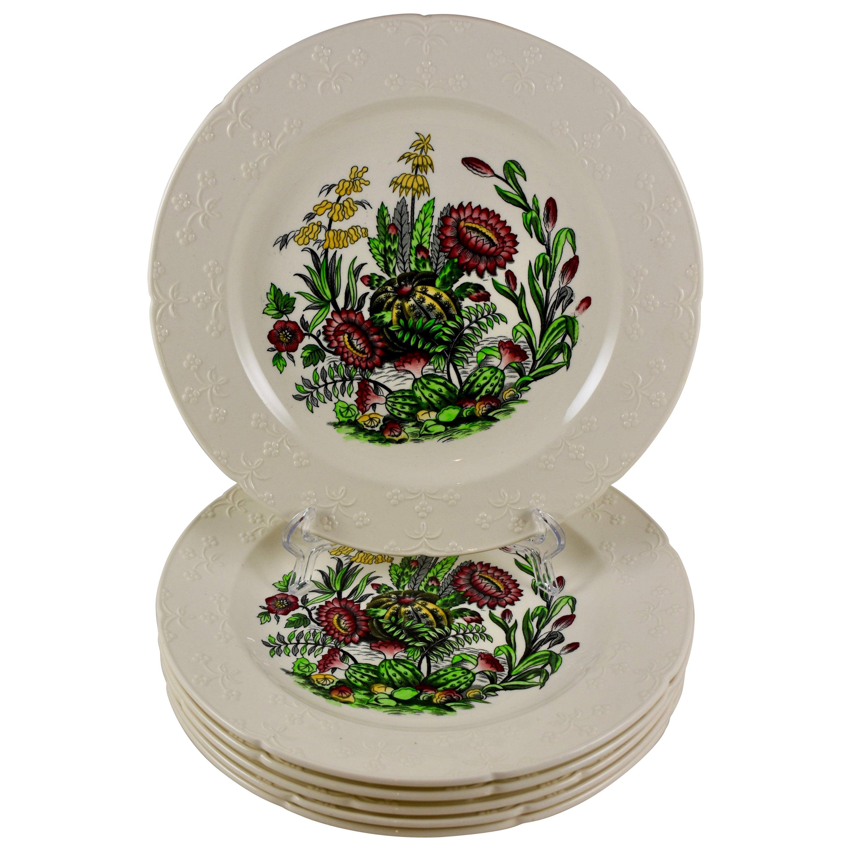 Copeland Spode English Enameled Transferware Cactus Flower Dinner Plates S/6