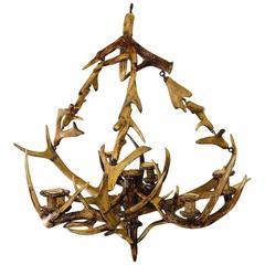 Antique Black Forest Antler Candle Luster