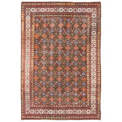 Antique N.W. Persian Rug with All-Over Design in Brown, Red, and Blue