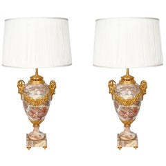 Pair of Late 19th Century Marble Table Lamps