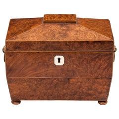 Antique Regency Amboyna Tea Caddy 19th Century