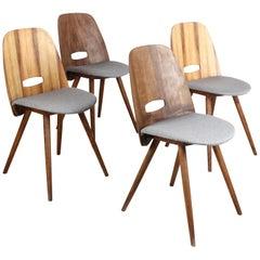 Set of 4 Frantisek Jirak Lollipop Dining Chairs with Walnut Veneer for Tatra