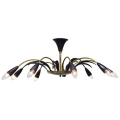 9-Arm Stilnovo Style Chandelier in Brass and Black, 1950s