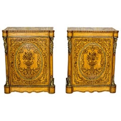 Pair of Walnut Cabinets from the 19th Century