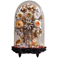 Antique French Sea Shell Floral Display under Glass Dome, France, circa 1870
