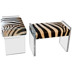 Contemporary Pair of Zebra Stools and Clear Plexiglass, Italy 2018