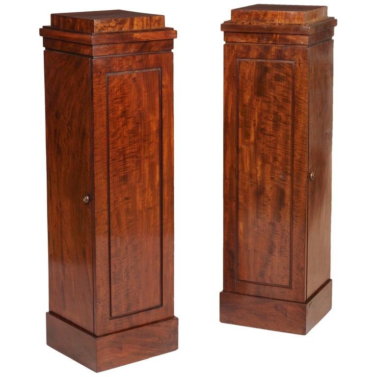 19th Century Pair of Georgian Mahogany Pedestal Cupboards