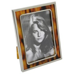 Tortoise-Like Celluloid and Chrome Picture Photo Frame
