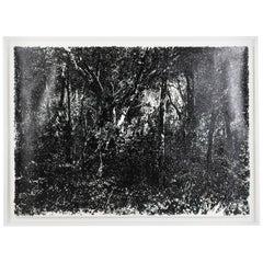 Soraya Vasconcelos Black and White Contemporary Painting