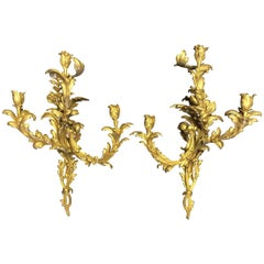French Louis XV Style Ormolu Sconces, 19th Century