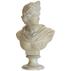 Alabaster Apollo Bust