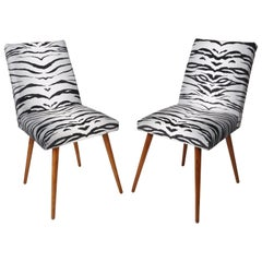 Set of Two 20th Century Black and White Zebra Velvet Chairs, 1960s
