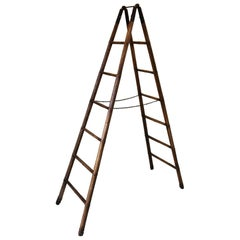 Antique Library Ladder or Steps