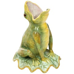 French Painted Frog