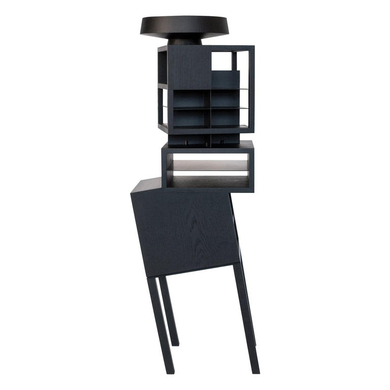 Hiro Contemporary Bookcase or Cabinet in Oakwood