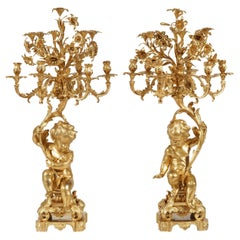 19th Century Gilt Bronze Pair of Candelabra in the Louis XV Manner
