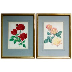 Pair of Christian Dior and Peace Rose Prints with Gilded Frames