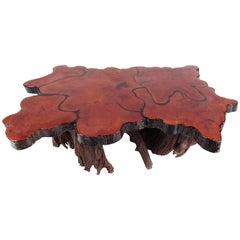 Vintage Rustic Tree Slab Coffee Table