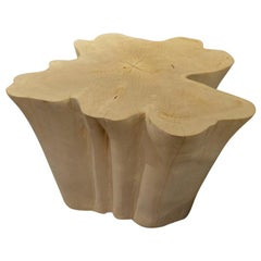 Andrianna Shamaris Bleached Teak Wood Organic Side Table