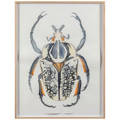 "Original Framed Watercolor Artwork by Linnea Saine Titled ""Beetle"""