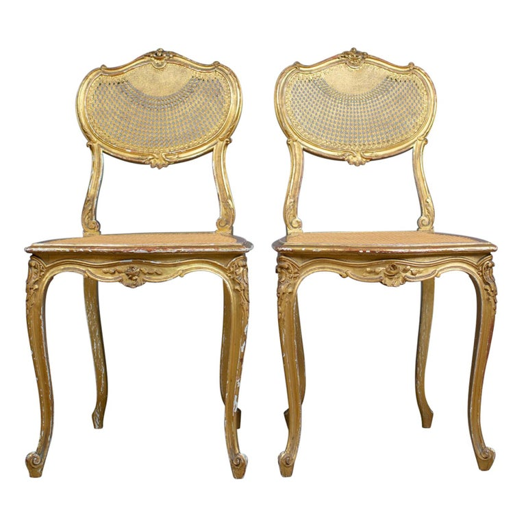 Antique Louis XV Revival Salon Chairs, French, Giltwood, Cane, circa 1900  For - Antique Louis XV Revival Salon Chairs, French, Giltwood, Cane, Circa 1900