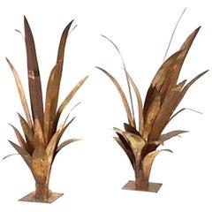 Pair of Palm Tree