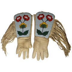 Animal Skin Native American Objects
