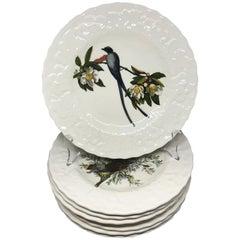 Set of Eight Audubon Bird Luncheon Plates