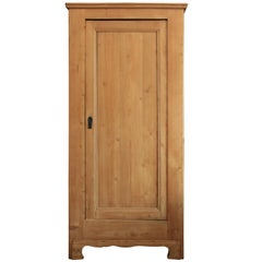Antique 1-Door Pine Cabinet, Southern Germany, circa 1840