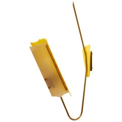 Rotaflex Style 1950s Perspex and Brass Arm Lamp, France