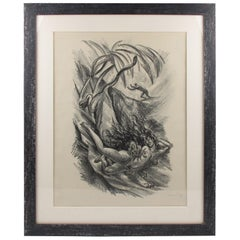 Adolf Uzarski 1919 Charcoal Drawing Lithograph, Tales of the Parrot