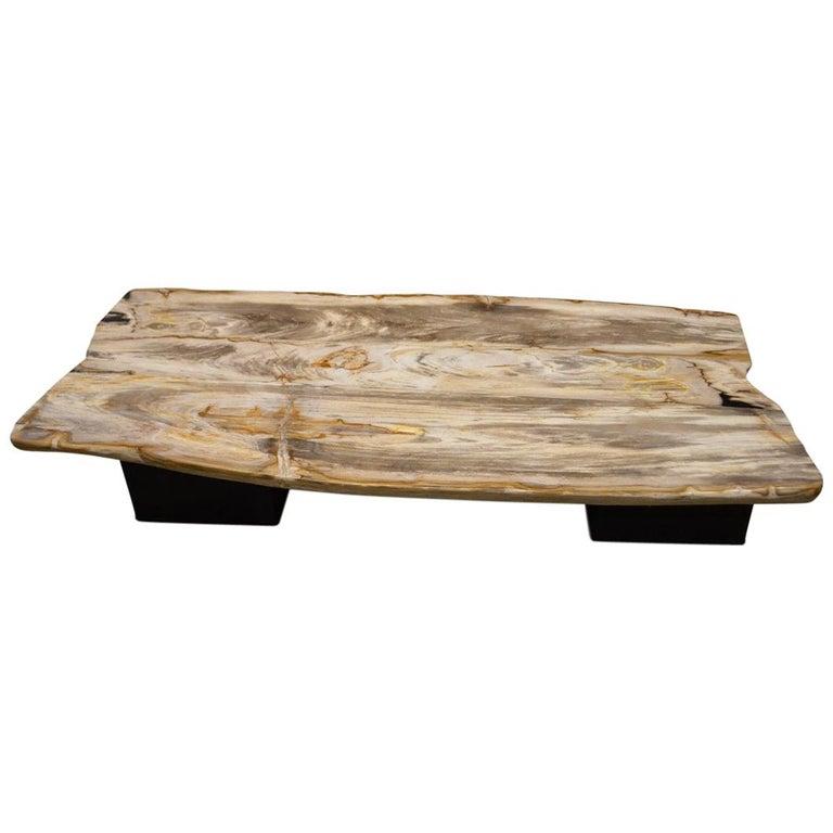 Andrianna Shamaris Super Smooth Petrified Wood Coffee Table