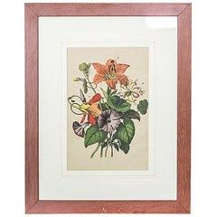 20th Century Colorful Graphic or Nasturtiums