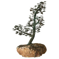 Rare Bronze of a Bonsai Tree in Full Leaf, 1960s