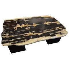Andrianna Shamaris High Quality Petrified Wood Coffee Table