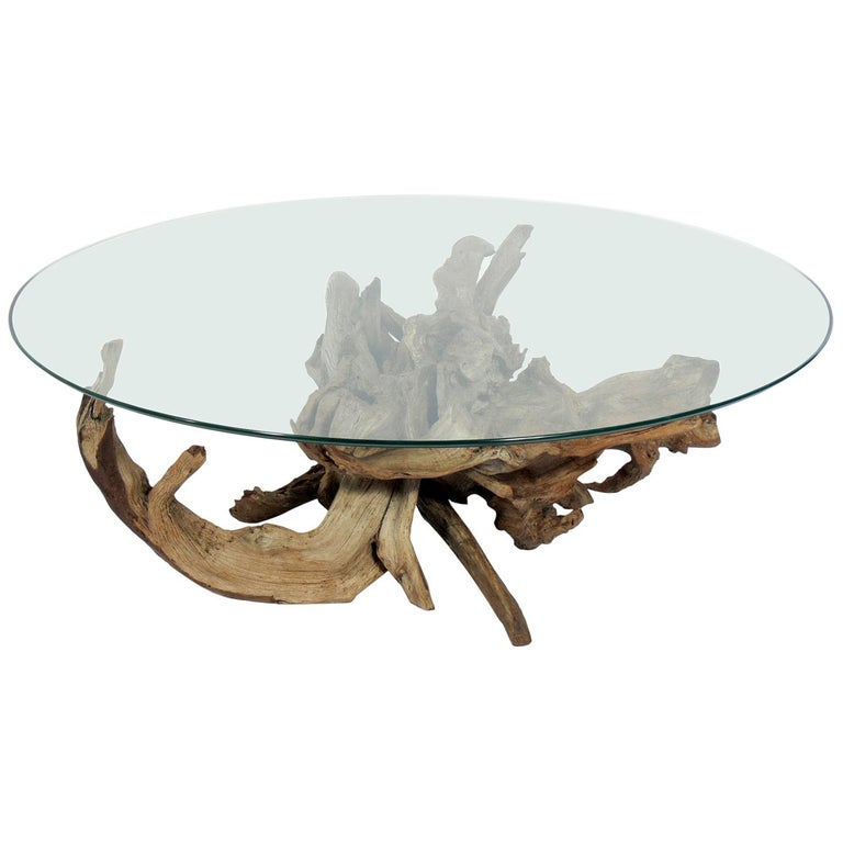 Sculptural driftwood coffee table, 1950s, offered by ABC Modern