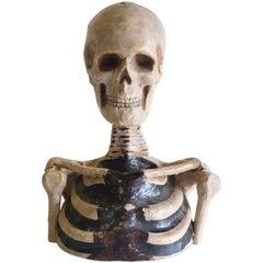 1800s Original Odd Fellows Papier Mâché Skeleton Bust