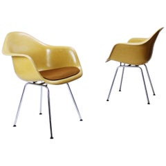Charles Eames Molded  Fiberglass Dax Armchairs on H-Base