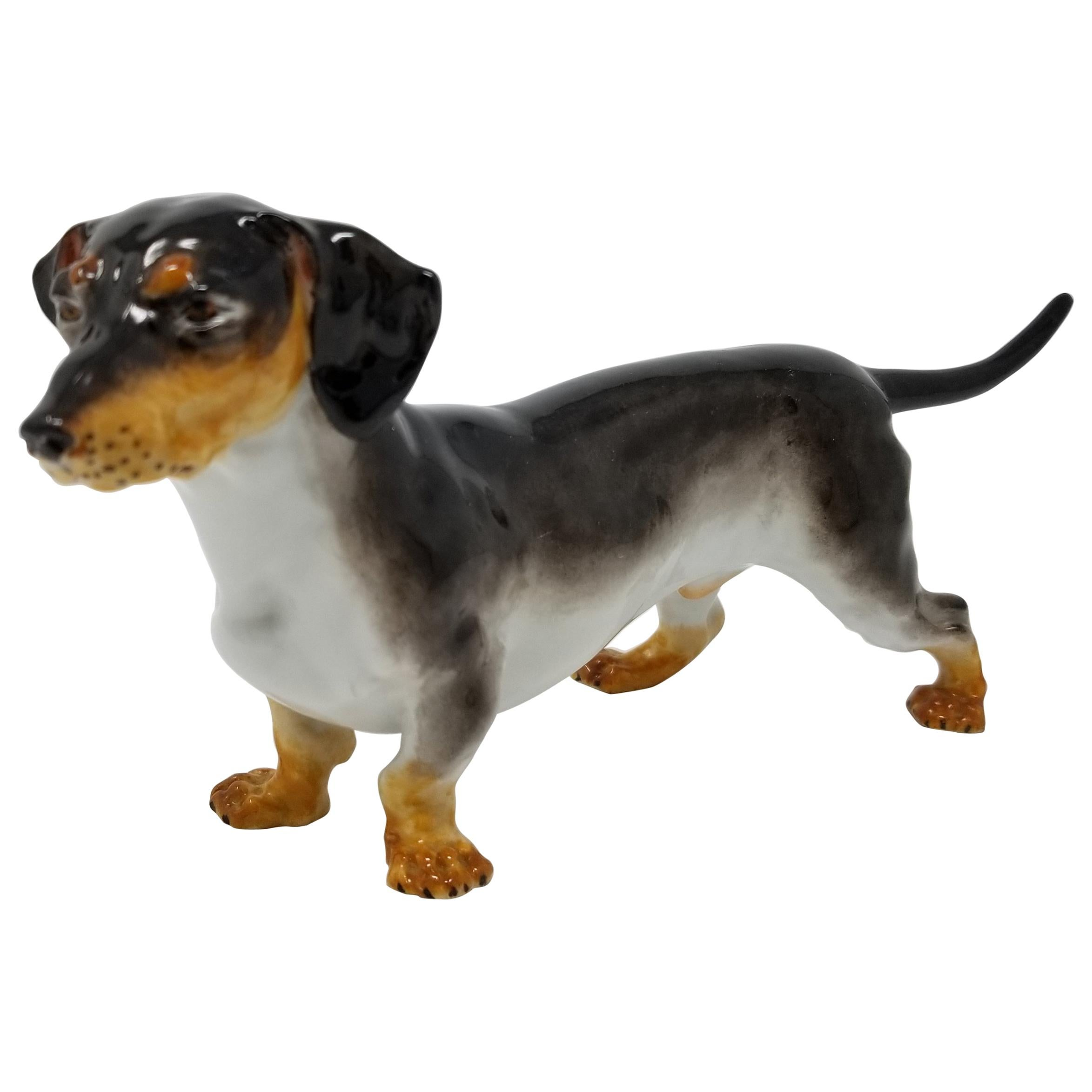 Antique Meissen Porcelain Figure of a Dachshund Dog