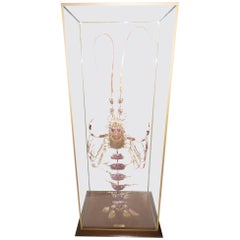 Large French Deconstructed Clawed Lobster Sculpture in a Glass and Brass Case